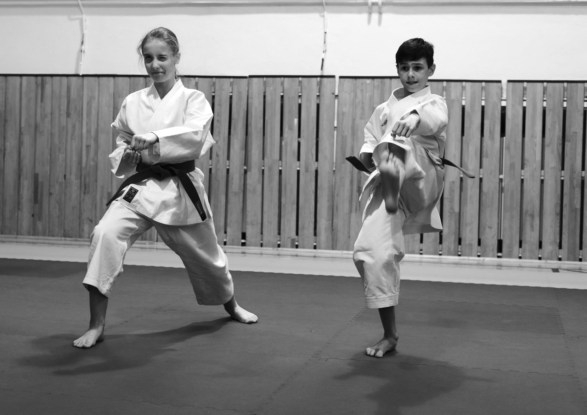 Galerie Karate Tygr Shotokan